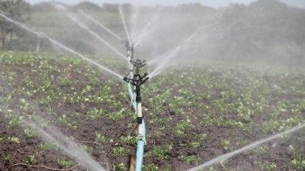 Közös vízgazdálkodási projekt indult a Dél-Alföldön és a Vajdaságban