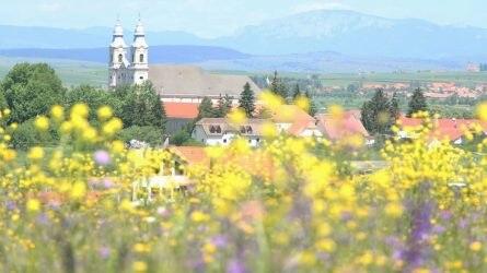 Bízzanak a jövőben! - üzeni Tóth Katalin helyettes államtitkár a határon túli gazdáknak