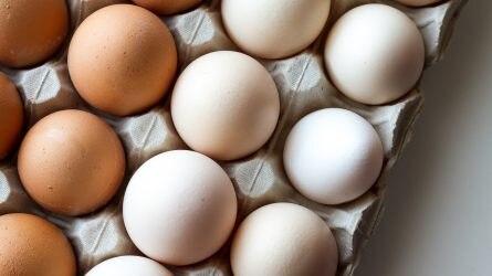 Kilengés után helyreáll a tojás ára