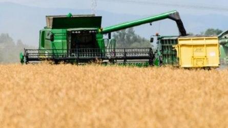 A mezőgazdaság a legkevésbé eladósodott ágazat