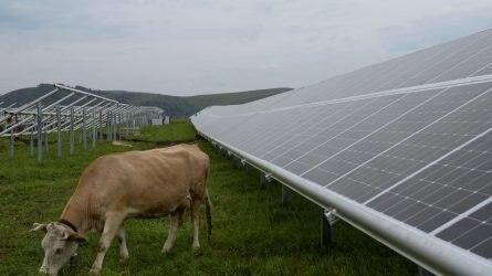 Szántóföldön is lehetne napelemet telepíteni