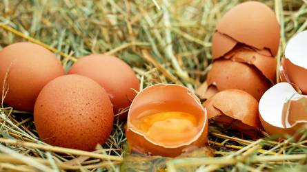 Drágulhat a tojás