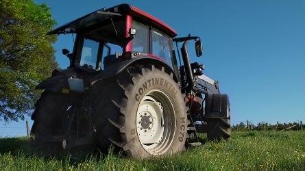A leggyakoribb keresési kulcsszavak között az MTZ, a traktor és a STIHL