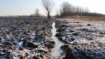 Több helyen is kárt okozhatott a fagyos időjárás
