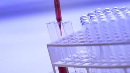 A fiatal kutatók számának megduplázása a cél
