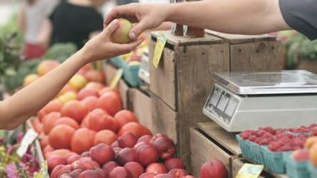 6 százalékkal nőttek a mezőgazdasági termelői árak idén augusztusban