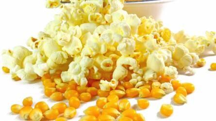 Biztos termelői üzlet – Európa várja a jó minőségű magyar pattogatni való kukoricát
