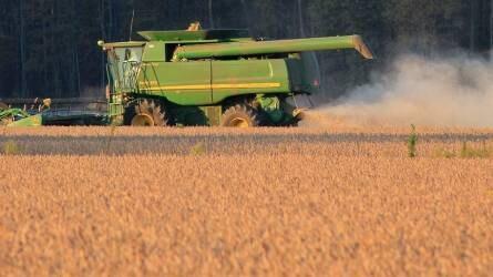 Amit a sikeres szójatermesztéshez tudni kell - Agrofórum kerekasztal az AGROmash-on