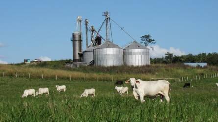 Az előző év alapján rekordot dönthet az agrárexport