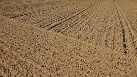 Jelentősen változott a földforgalmi törvény - Ezeket kell tudni földvásárlásról