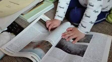 A legifjabb generáció is az Agrofórumot olvassa - Az Agrofil-SZMI Kft. Instagramjáról