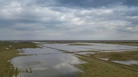 Békésben már 14 ezer hektár van víz alatt