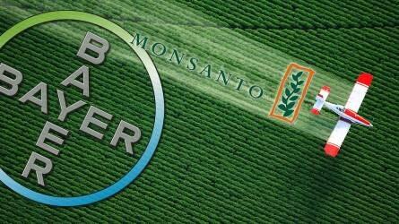Brüsszel zöld utat adott a Bayernek a Monsanto megvásárlására