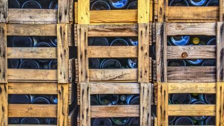 Foglalkoztatási felmérés készül a szőlő-bor ágazatban