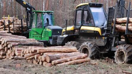 Módosultak a hengeresfa, a tűzifa és az apríték kereskedelmi szállításának szabályai