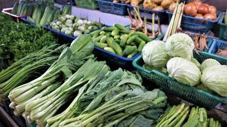 Hiánypótló az agrár- és élelmiszer-kereskedelem országos osztály