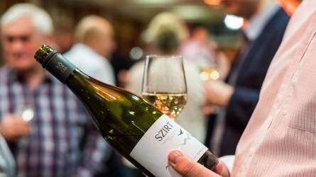Szekszárdi, tolnai, tokaji és badacsonyi volt a legjobb bor