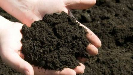 Kamarai segítség a tápanyag-gazdálkodási terv készítésében