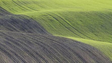 Nemzetgazdasági érdek az agrárium fejlődése