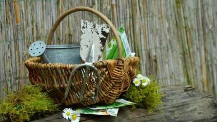 Kertészt kapájáról