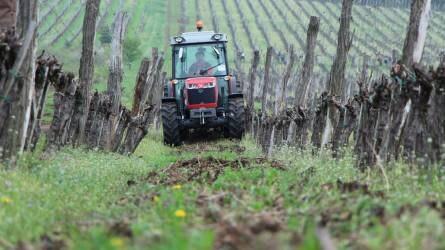 Güttler szőlészeti gépbemutató Egerben