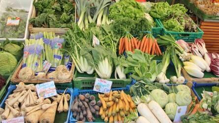 Már az élelmiszer-biztonságnak is van világnapja