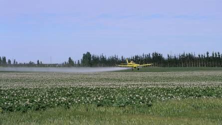 A biztonságos növényvédő szer szállítás és tárolás aranyszabályai