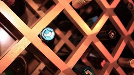 A szőlő- és borágazatra rekordösszegű támogatások jutnak