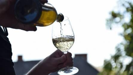 Hamarosan megkóstolhatjuk az idei balatoni borokat