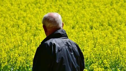 EU-s számmisztika: reálértéken akár 15 százalék is lehet az agrártámogatások kurtítása