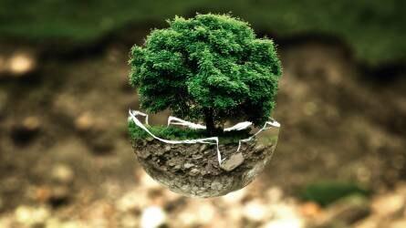 Elkészítették Magyarország ökoszisztéma-alaptérképét