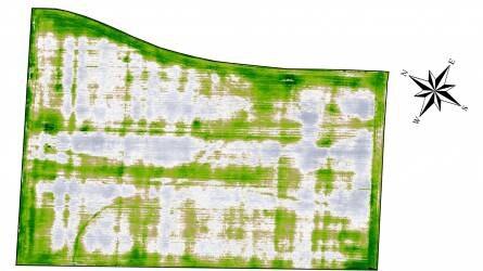A helyspecifikus szántóföldi növénytermesztés jelenlegi helyzete Magyarországon