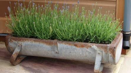 Második esély – ötletek a kert és udvar megújításához és szépítéséhez újrahasznosítással II. rész