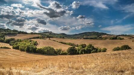 Elfogadhatatlan az uniós költségvetés agráriumot érintő csökkentése