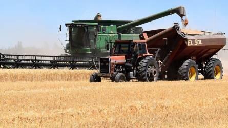 3,1 százalékkal nőtt idén a mezőgazdaság teljes kibocsátási értéke