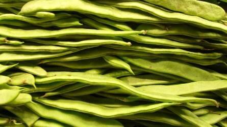 Értékes zöldségnövényeink I. rész