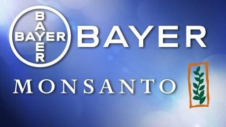 Bayer-Monsanto felvásárlás: 60 milliárd euróra nőhet a német cég bevétele