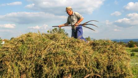 Csökkent a mezőgazdasági halálos munkabalesetek száma