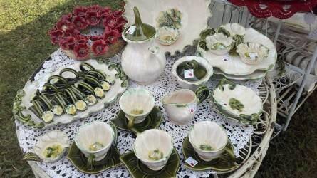 A fehérvárcsurgói virág-világ