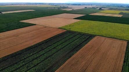 A birtokviszonyok rendezetlensége mint a mezőgazdaság versenyképességének akadálya