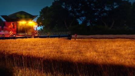 RAPOOL-hibridrepcék terméstanúsítása a Magyar Kukorica Klub mérései alapján (FRISS EREDMÉNYEK)