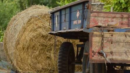 Pronar, Fliegl, Agrogép sorrend a pótkocsipiacon