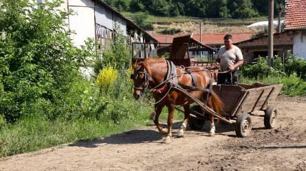 Bulgária: folyékony arany és rózsaszín álmok