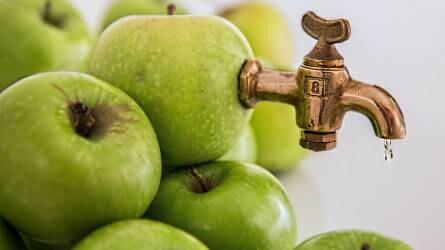 Kínai almalé-sűrítményt ihat Európa?
