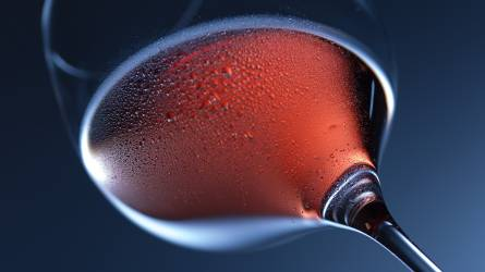 Utazás a szőlők és a borok világában
