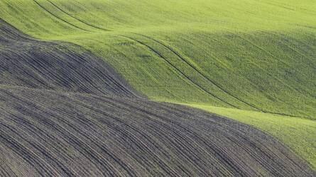Feles bérlet elszámolása a mezőgazdaságban