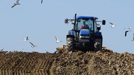 A növénytermesztés alapja a talaj