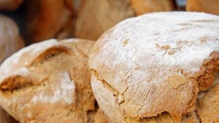 A régi magyar kenyér és a régi magyar búzafajták