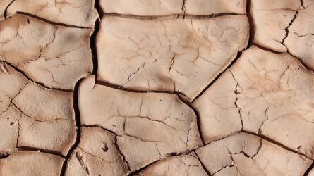 Ebből nagy baj lehet: már kritikus a szárazság az ország egyes részein