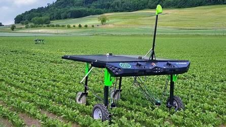 Gyomirtás automatikusan, minimális herbiciddel - Bemutatkozik az ecoRobotix pont-permetező robot